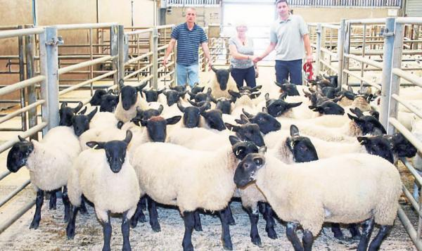 TROPHY WINNERS: Pictured with the champion pen of 50 Suffolkcross lambs at Skipton are, from left, judge James Spensley, sponsor's representative Grace Dobson and exhibitor Robert Metcalfe.