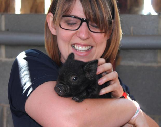 CUTE PIGLETS: Michelle Woolams, farm services co-ordinator, with one of the new arrivals.