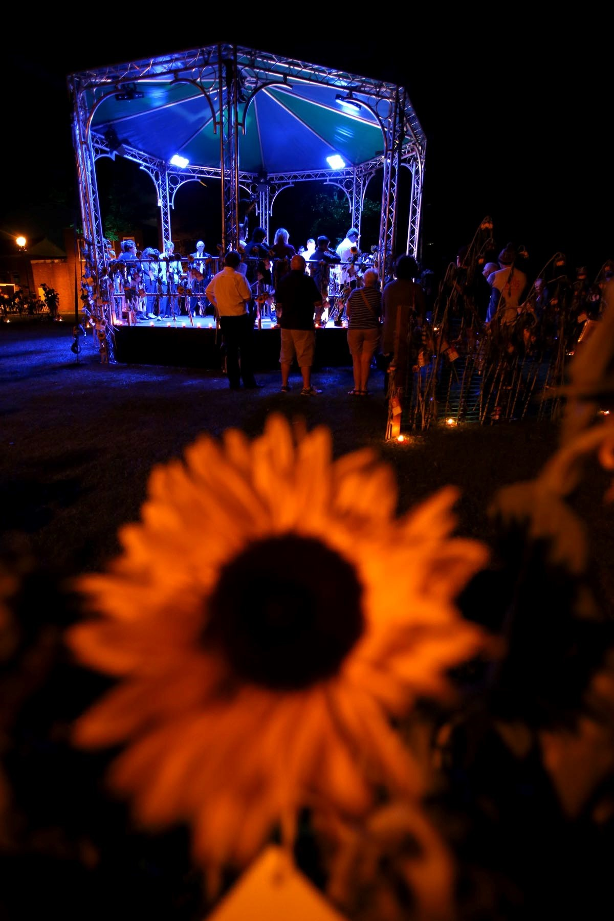 Sunflowers, poems and candles ensure town's 1,245 war dead are not forgotten