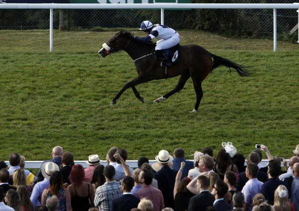 ON THEIR WAY: Online Alexander ridden by Amy Ryan wins the Seamus Buckley's 20th Glorious stakes during day five of Glorious Goodwood last Saturday