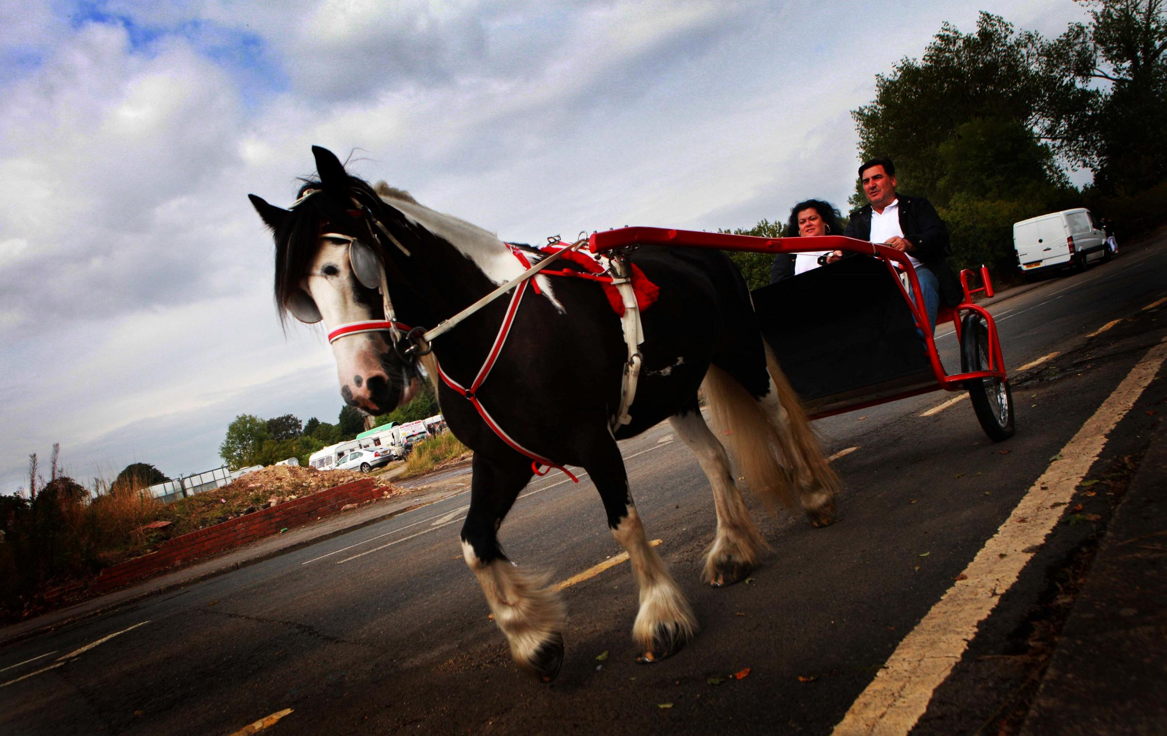 Sedgefield horse fair passes without incident