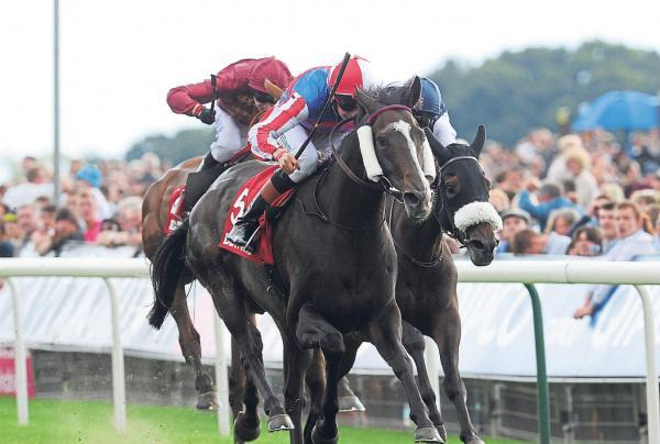 WINNER: Mutual Regard ridden by Louis Steward wins the Betfred Ebor on Betfred Ebor Day during Day Four of the 2014 Welcome To Yorkshire Ebor Festival at York