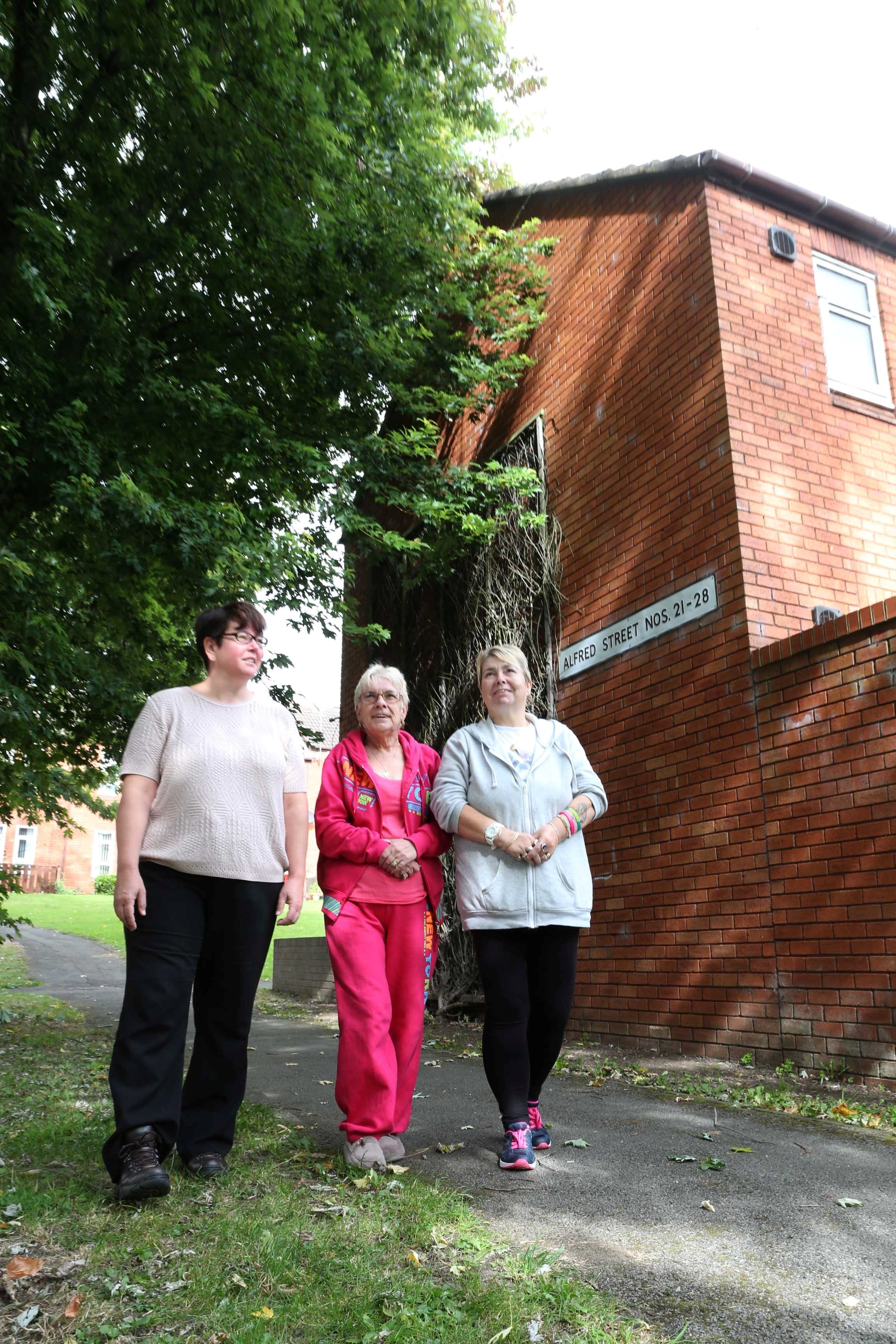 Darlington pensioner expresses concern about overgrown trees