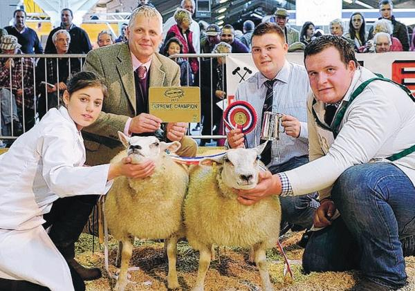 PRIZE PAIR: the 2013 Countryside Live champion pair of butchers lambs, owned by Joe Burnett, of Leominster. From left, Claire Dent, judge Malcolm Stewart, Joe Burnett and Aled Groucott