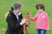 Shelley Rogerson of the Rare Breeds Survival Trust holding a Golden Guernsey kid with three year old Lacey Bell at last year's Springtime Live