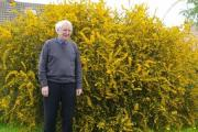 Cllr Ron Kirk on one of the neglected community grass areas in Great Ayton