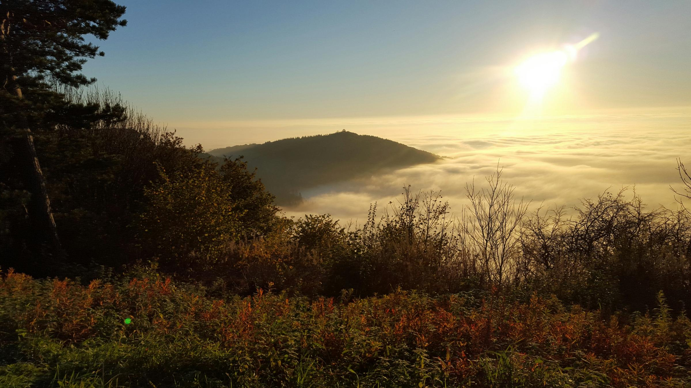 READER'S VIEW: John Carrington, of Sowerby, Thirsk, took this view from the top of Sutton Bank