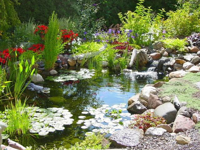 spring garden pond