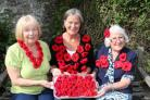 POPPIES: Nannette Hamper, Deborah Shaw-Pethers and Margaret Wright with some of the knitted poppies