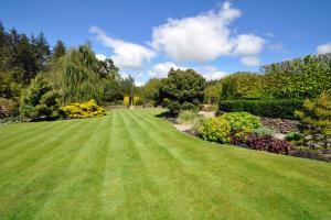 It's time to start work on creating a lush summer lawn