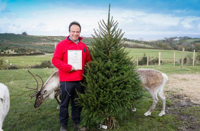 British Christmas Tree Growers Association S New Chairman Is York