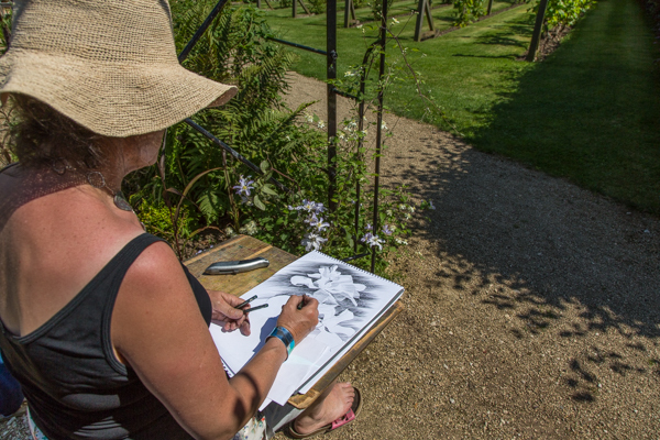 CREATIVE: An artist in Helmsley Walled Gardens, where courses in creativity and mindfulness are running. Picture: COLIN DILCOCK