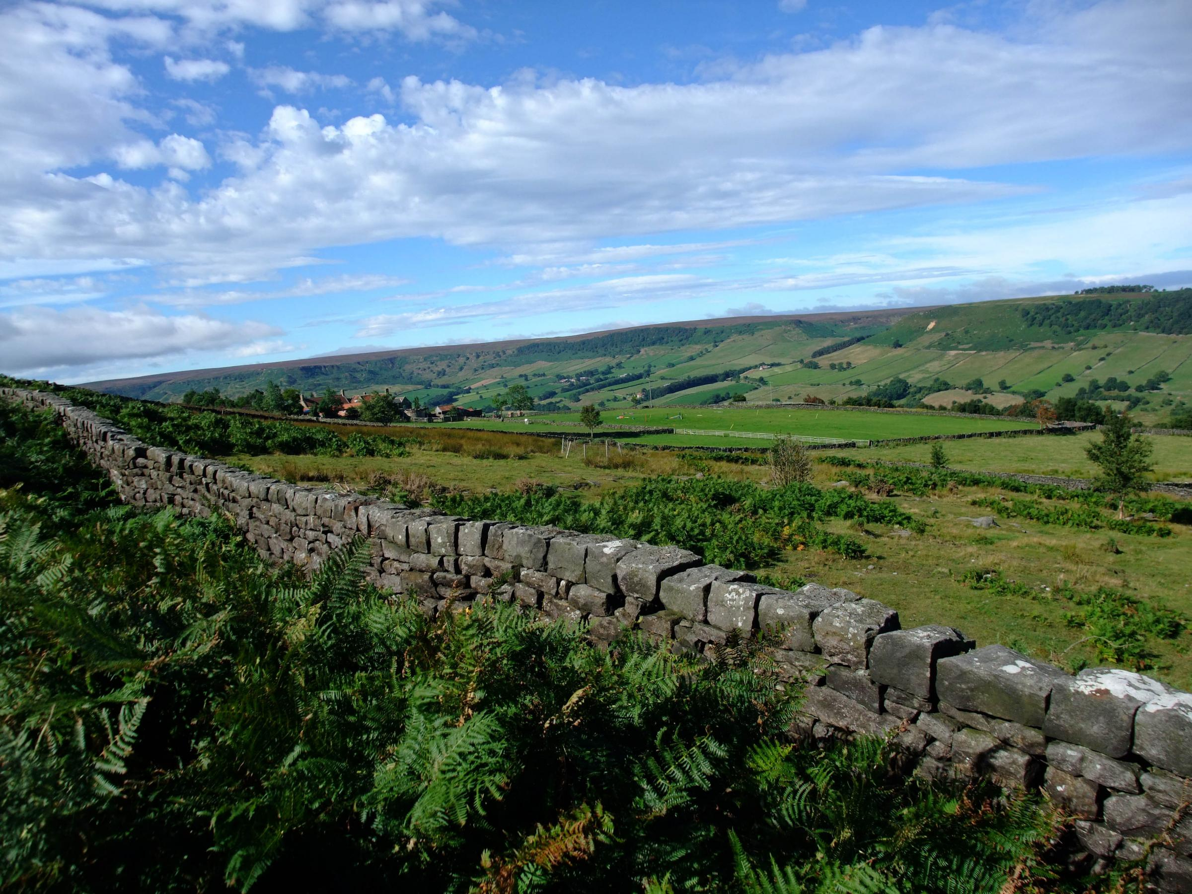 GRANTS: The cash can be used to improve and conserve features like drystone walls.