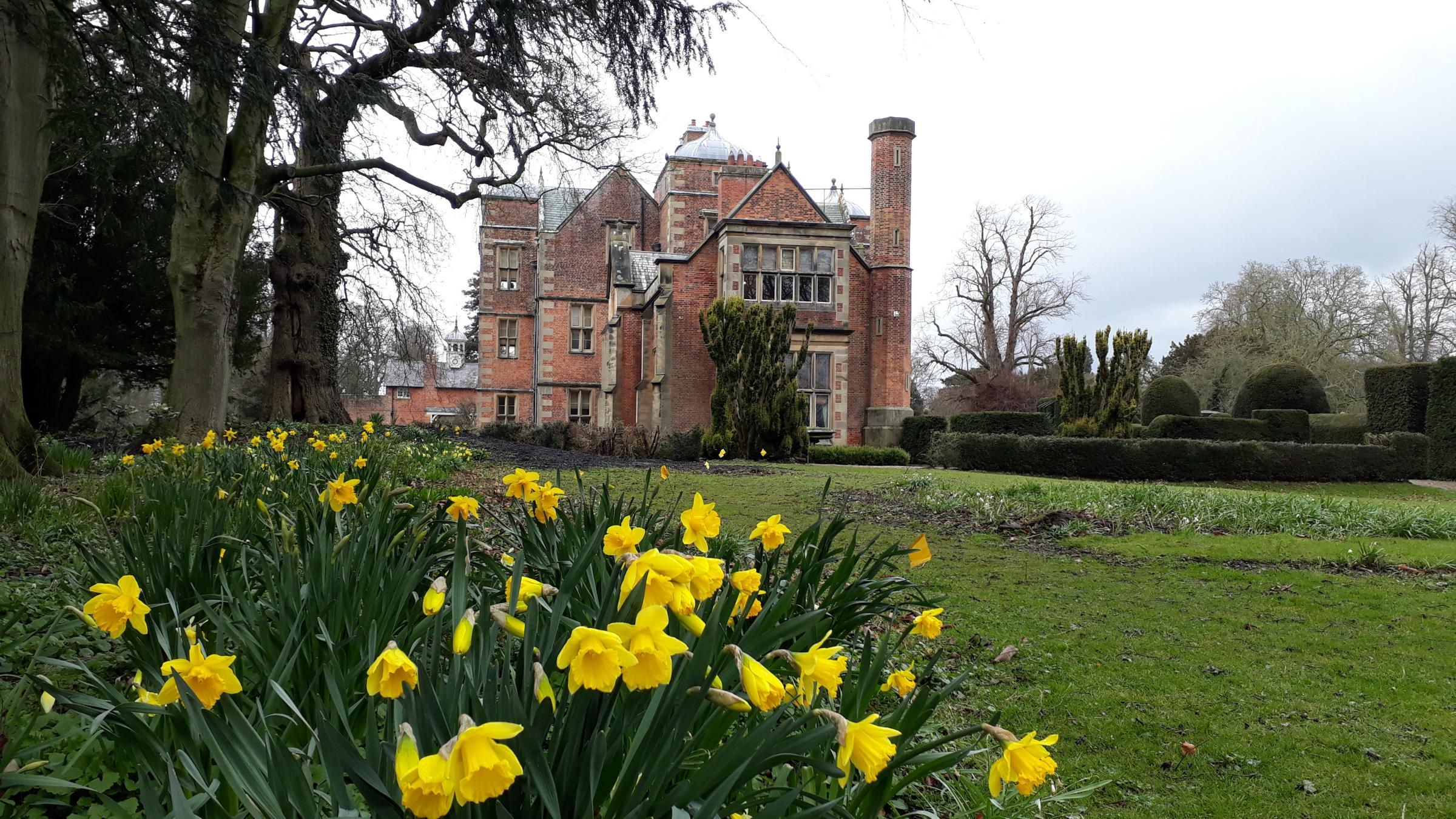 READER'S VIEW: Jamie Mash from Northallerton made his way to Kiplin Hall on an early spring day to capture this shot of daffodils in bloom within the grounds of the great house.