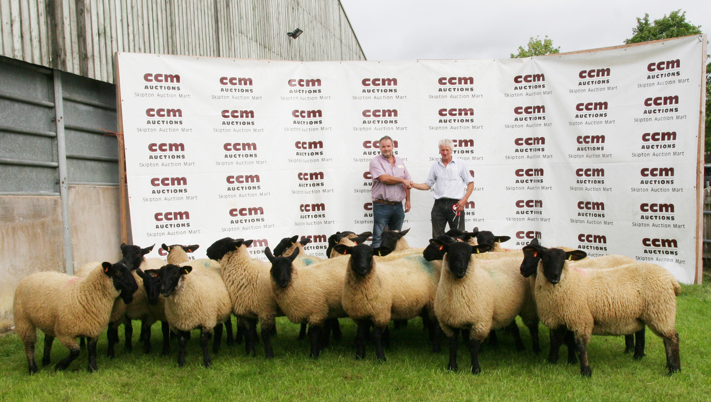 Silsden Moor husband and wife, Jeff and Judith Throup, of Snow Hill Farm, took first prize with their Suffolk gimmer lambs at Skipton Auction Mart