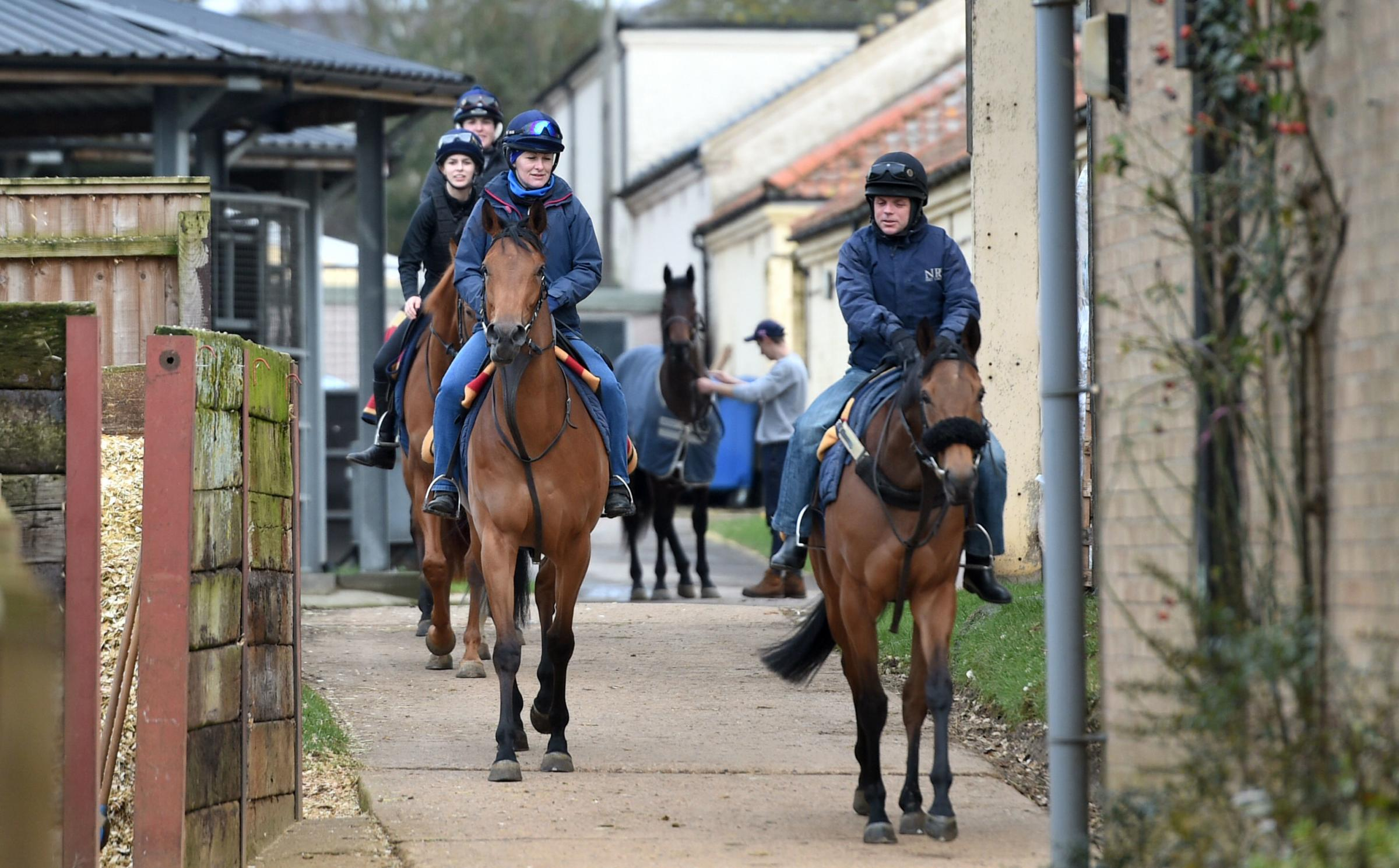 Stable staff at Kremlin House Stables, Newmarket.  Picture: Joe Giddens/PA Wire