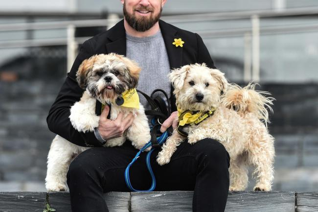 Rugby star Shane Williams meets rescue dogs at the Senedd